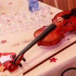 animation-violon-electrique-soiree-entreprise